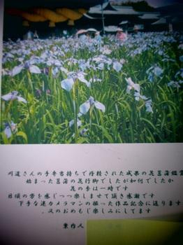 IMG_4298縮小.jpg